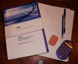 Accountancy work books